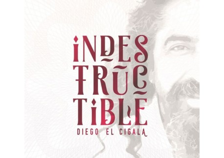 Diego el Cigala - Indestructible  CD