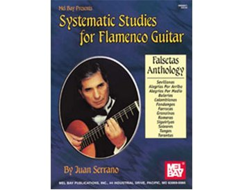 Systematic Studies for Flamenco Guitar