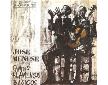 Cantes Flamencos Básicos