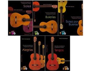 Estudios progresivos para Guitarra Flamenca. v.1,2,3,4,5
