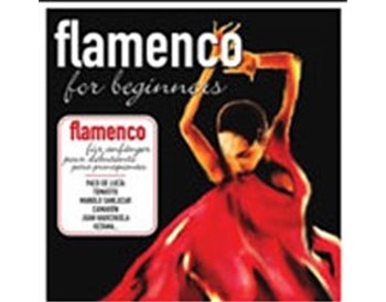 FLAMENCO FOR BEGINNERS