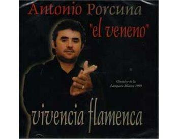 Vivencia Flamenca
