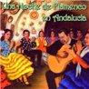 Una noche de Flamenco en Andalucía